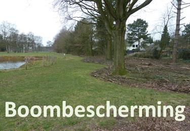 boombescherming-375x258