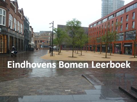Eindhovens Bomen Leerboek